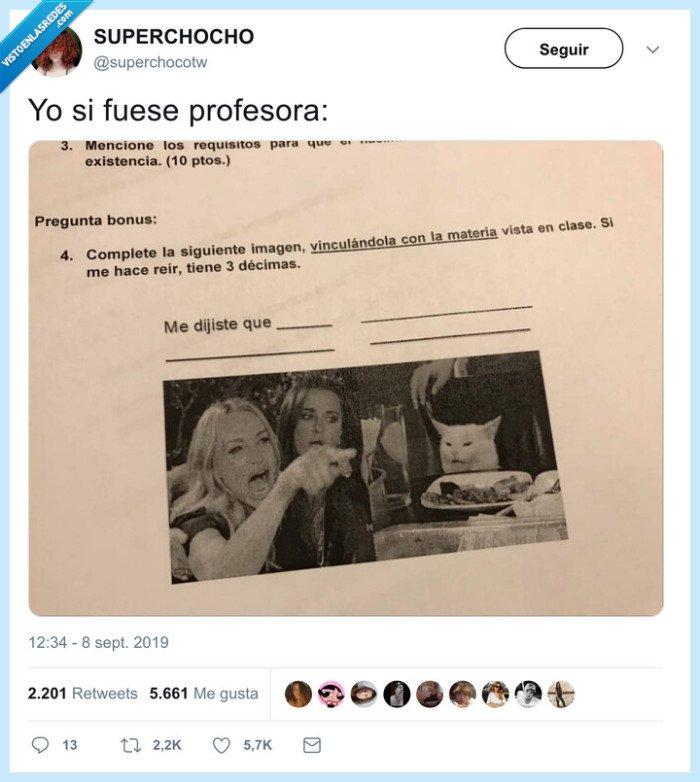 examen,gato blanco,meme,profesor