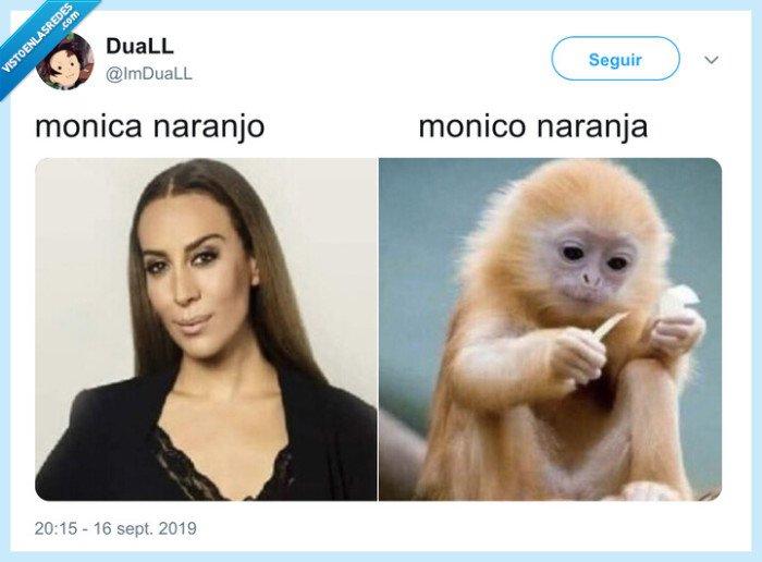 monica naranjo,monico,naranja