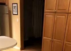 Enlace a Espectacular vídeo de la captura de un peligroso delincuente instantes después de cometer el delito