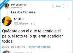 Enlace a Las 2 Españas, por @donchalecos