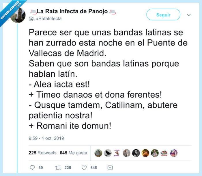 bandas latinas,latín,pelea