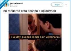 Enlace a Esto sale en Director's Cut de Spiderman, por @yisucrist