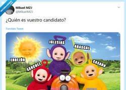 Enlace a ¿Quién es vuestro candidato? por @MikaelMZJ