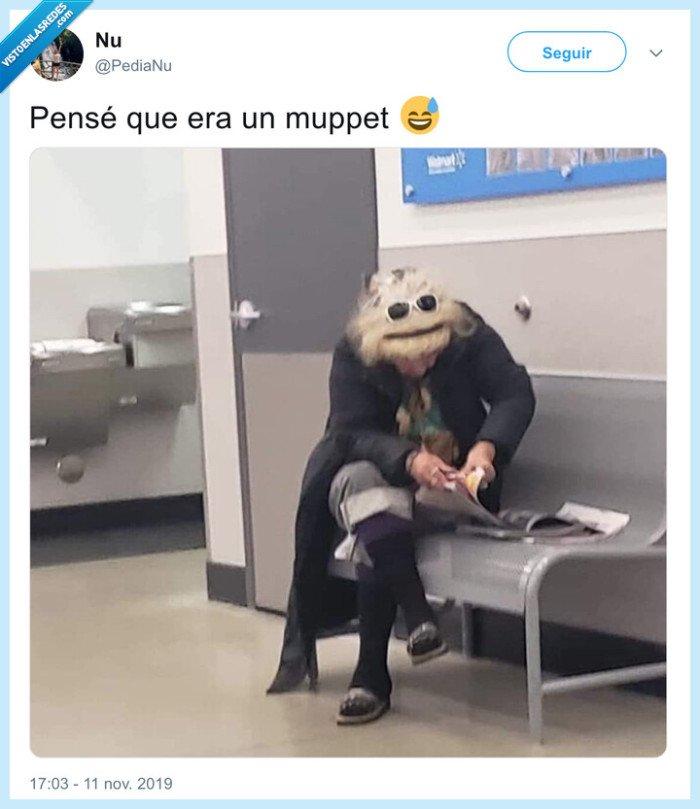 mujer,muppet,pelo,teleñeco