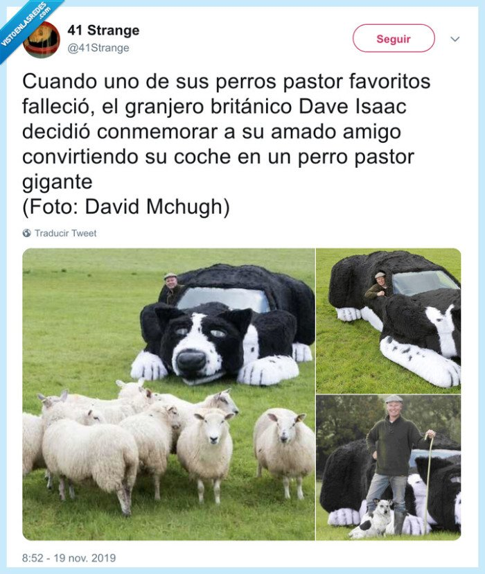 coche,dep,ovejas,pastor,perro