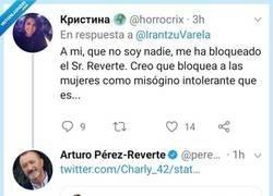 Enlace a Señorita acusa a Arturo Pérez Reverte de misógino... y se lo lleva calentito