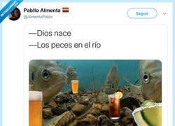 Enlace a Tendrás que cantar el villancico para pillarlo bien, por @AlmentaPablo