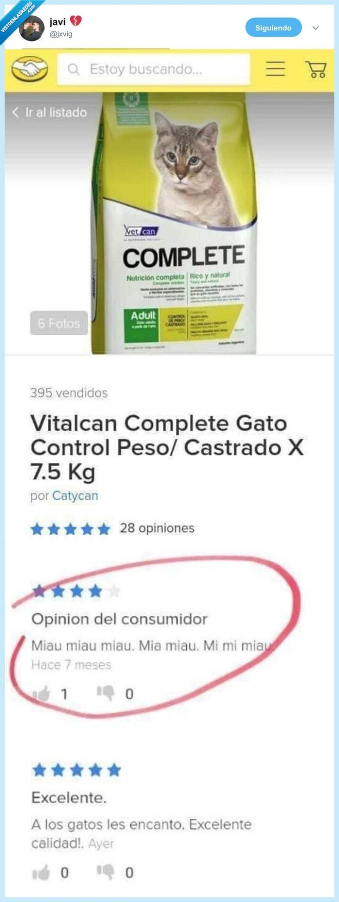 gato,pienso,review