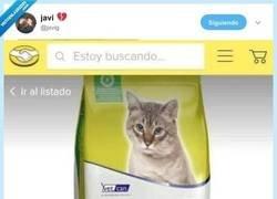 Enlace a Recomendado por 9 de cada 10 gatos, por @jxvig