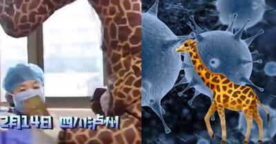 540400 - Acude al médico disfrazada de jirafa al no poder conseguir una mascarilla para protegerse del coronavirus