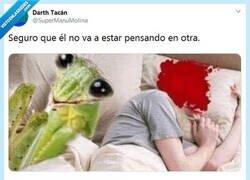 Enlace a La mantis no se preocupa por las infidelidades por @supermanumolina
