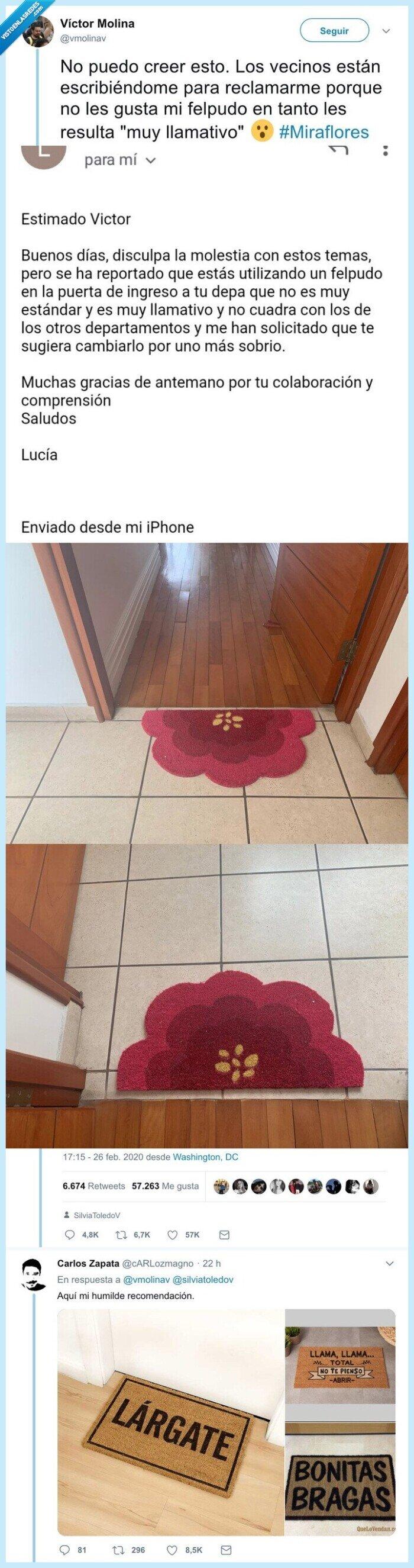 casa,felpudo,flores,puerta
