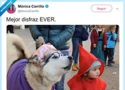 Enlace a El mejor disfraz de la historia, por @MonicaCarrillo