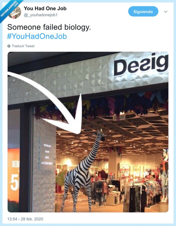 biología,cebra,desigual,jirafa