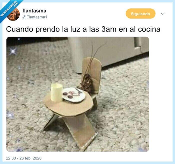 cocina,cucaracha,festín