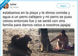 Enlace a Cuando tu perro te sale un poco rencoroso, por @_lucho4