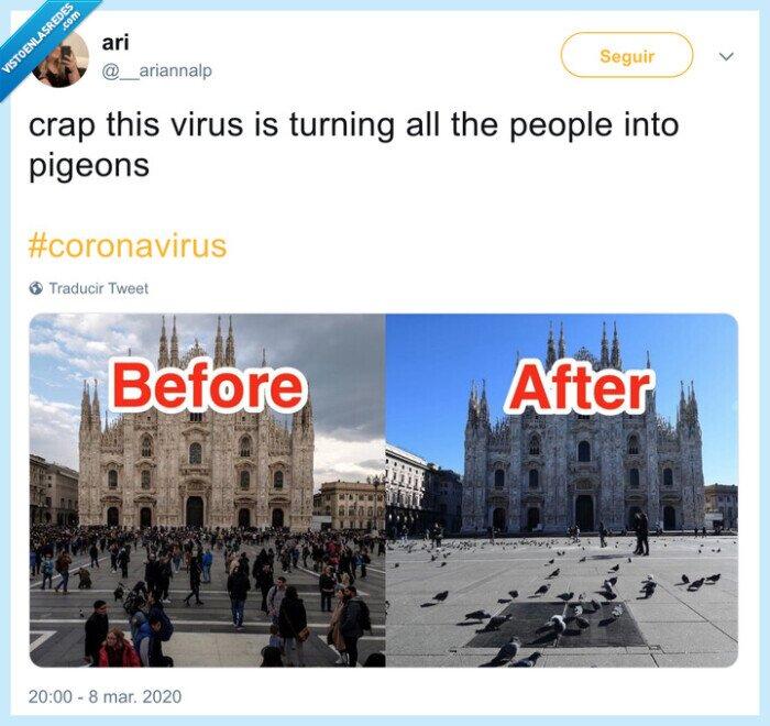 coronavirus,palomas,sitios