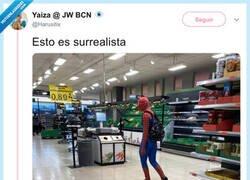 Enlace a Peter Parker también se protege, por @Harusitix