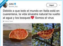 Enlace a Las pizzas vuelven a su hábitat natural, por @Julian_Epp