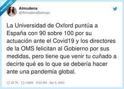 Enlace a Me vas a comparar las mentiras y engaños de la Universidad de Oxford con la barra del bar, por @AlmudenaBalongo