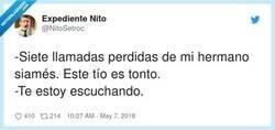Enlace a Cuidado con los siameses, por @NitoSetroc