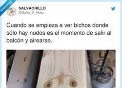 Enlace a Hostias... yo no tengo balcón ¿qué hago?, por @Salva_A_Hdez