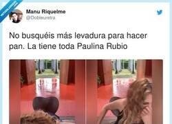 Enlace a Paulina Rubio: voy borracha, me voy a mi casa. Also Paulina: pero si ya estoy en mi causa, causa, casa, por @Dobleuretra
