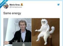 Enlace a El meme del mes, por @mariagrauuuu