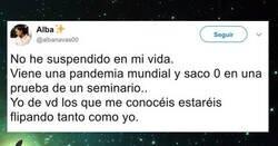 Enlace a La lamentable respuesta de la Universidad de Granada a una alumna ha dejado a todos sin palabras (y para mal)