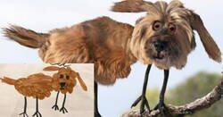Enlace a Un padre muestra cómo serían los animales en la vida real si fueran como los dibujan sus hijos