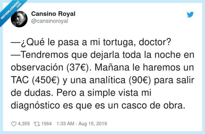 (450€),analítica,casco,diagnóstico,observación,tendremos,tortuga