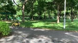 Enlace a Robots patrullan los parques de Singapur avisando a la gente que no mantiene distancia social, por @DaniNovarama