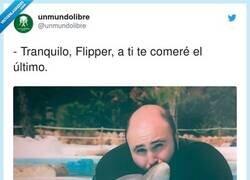 Enlace a Al menos le ha cogido cariño, por @unmundolibre