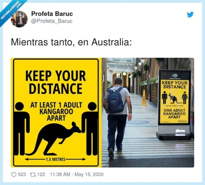 australia,canguros,coronavirus,distancia de separación,mientras tanto