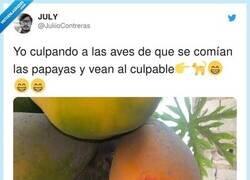 Enlace a Menudo cabrón, por @JuliioContreras