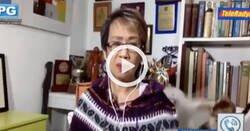 Enlace a Dos gatos se meten de hostias en medio de una entrevista por videollamada