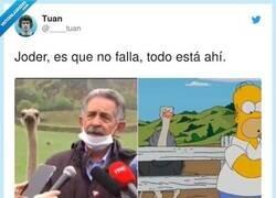 Enlace a Y con la mascarilla mal puesta. Marca España, por @____tuan