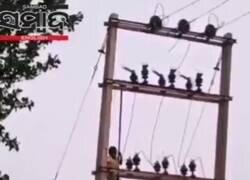 Enlace a Un niño de cinco años desciende de una torre eléctrica sin percatarse del peligro y encoge el corazón de Twitter