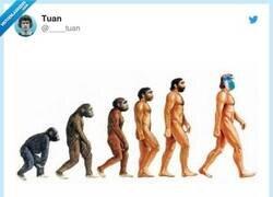 Enlace a ¿No crees que el último debería ser el mono que ha robado las muestras del Covid?, por @____tuan