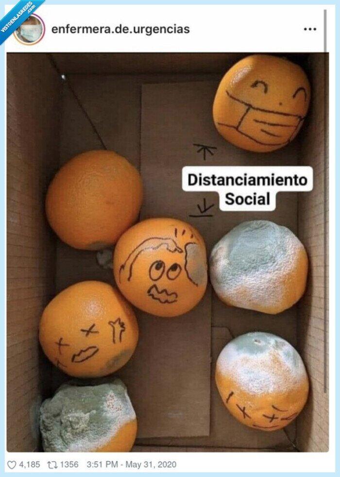 coronavirus,distancia,importancia,naranjas,podridas,seguridad