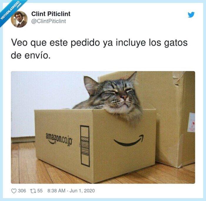 envío,gastos,gatos,incluye,pedido