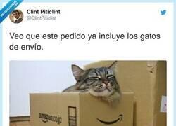 Enlace a Menos mal, cuando los gatos van a parte te crujen, por @ClintPiticlint