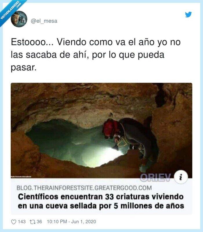 criaturas,cringe,cueva sellada