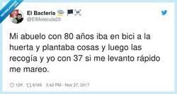 Enlace a Generaciones de mal en peor, por @ElMolecula23