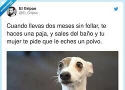Enlace a No entiendo el problema, por @El_Gripao