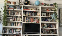 Enlace a Un nuevo reto visual está llamando mucho la atención de los usuarios en las redes porque nadie puede encontrar al gato en la estantería