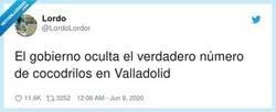 Enlace a Desde enero se veía venir que acabaría habiendo cocodrilos en el Pisuerga, qué irresponsabilidad, por @LordoLordor