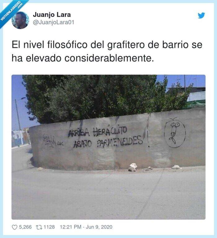 barrio,considerablemente,elevado,filosófico,grafitero,nivel