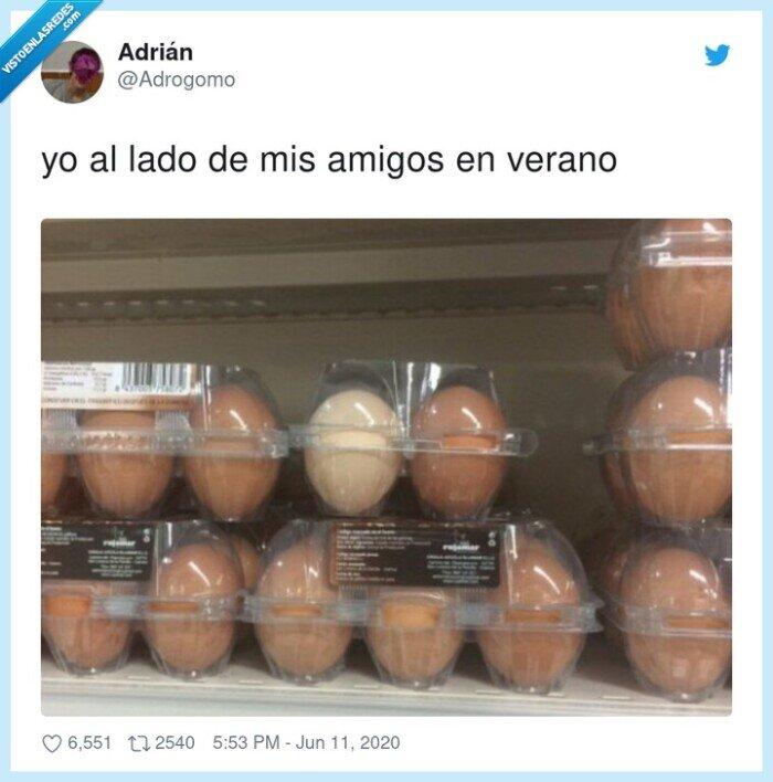 blancos,bronceado,huevos,moreno,verano