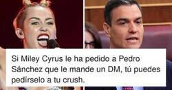 Enlace a Pedro Sánchez contesta a Miley Cyrus en Twitter y se monta una fiesta nacional, la gente ha enloquecido